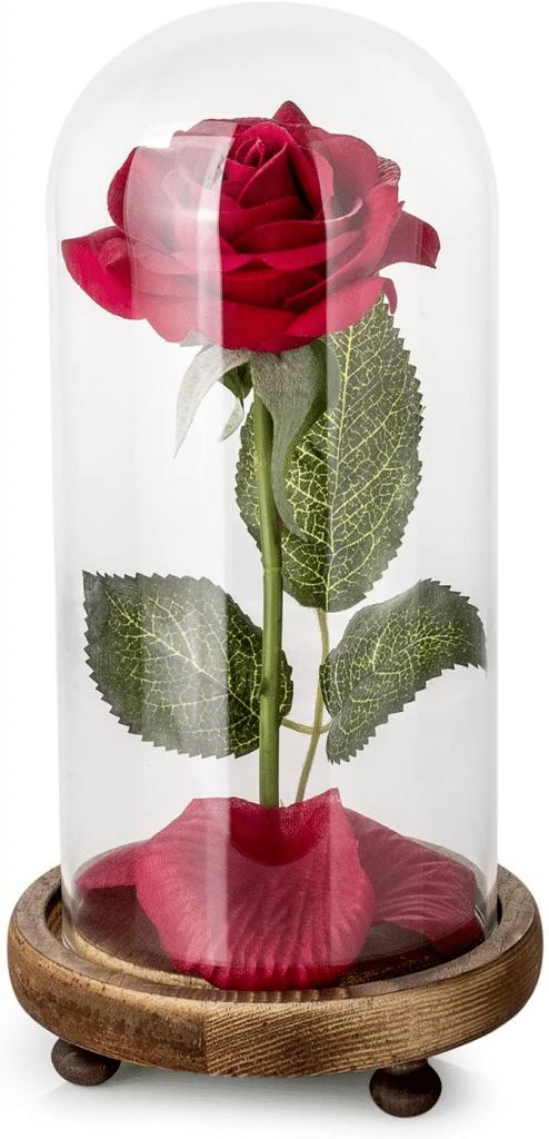 Kit de Rosas La Bella y la Bestia